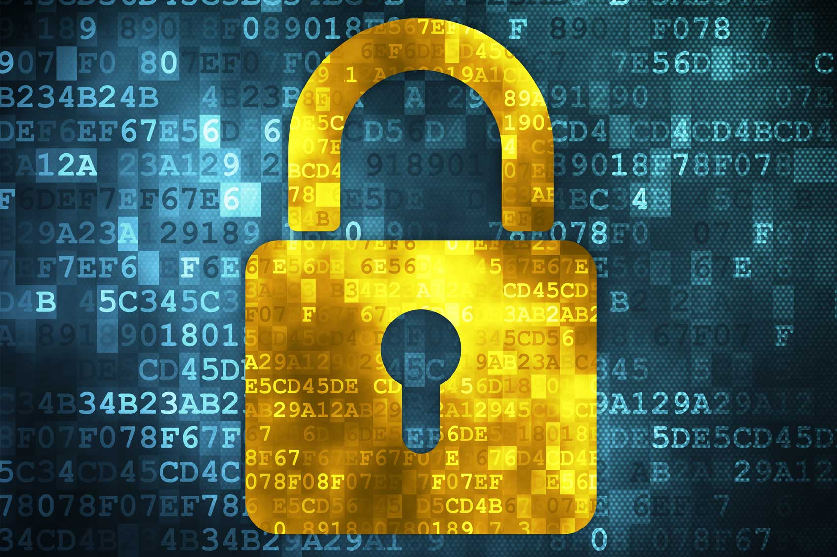 Network Security Banner